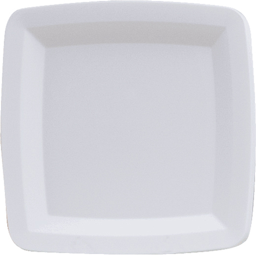 White Square Plastic Dinner Plates
