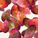 Flower Petals Beverage Napkins