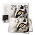 Tiger Eye Paper Note Cards