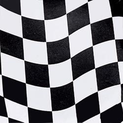 Checkered Flag Luncheon Napkins
