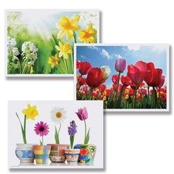 Spring Paper Placemats - Multipack