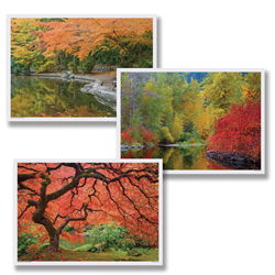 Fall Seasons Paper Placemats - Multipack