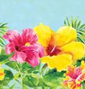 Hibiscus Floral Plastic Banquet Tablecloths