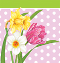 Floral Plastic and Paper Table Covers - Tablecloths