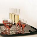 Premium Plastic Wine Glasses - Reusable